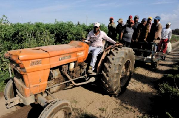 Ouvriers agricoles journaliers