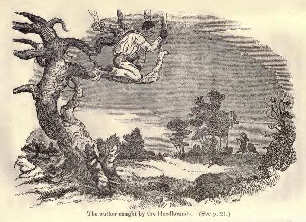 "Hell hound on my trail (Tavola da  ""Illustrated Edition of the Life and Escape of Wm. Wells Brown from American Slavery"", by Wm. Wells Brown, Written by Himself, 1851)"