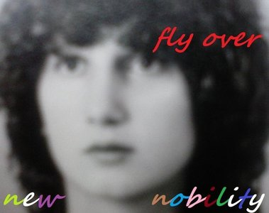 fly over cover